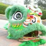 Lunar New Year (16)